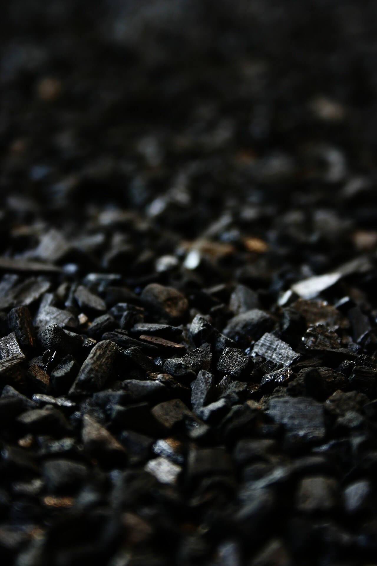 carbonstöcke